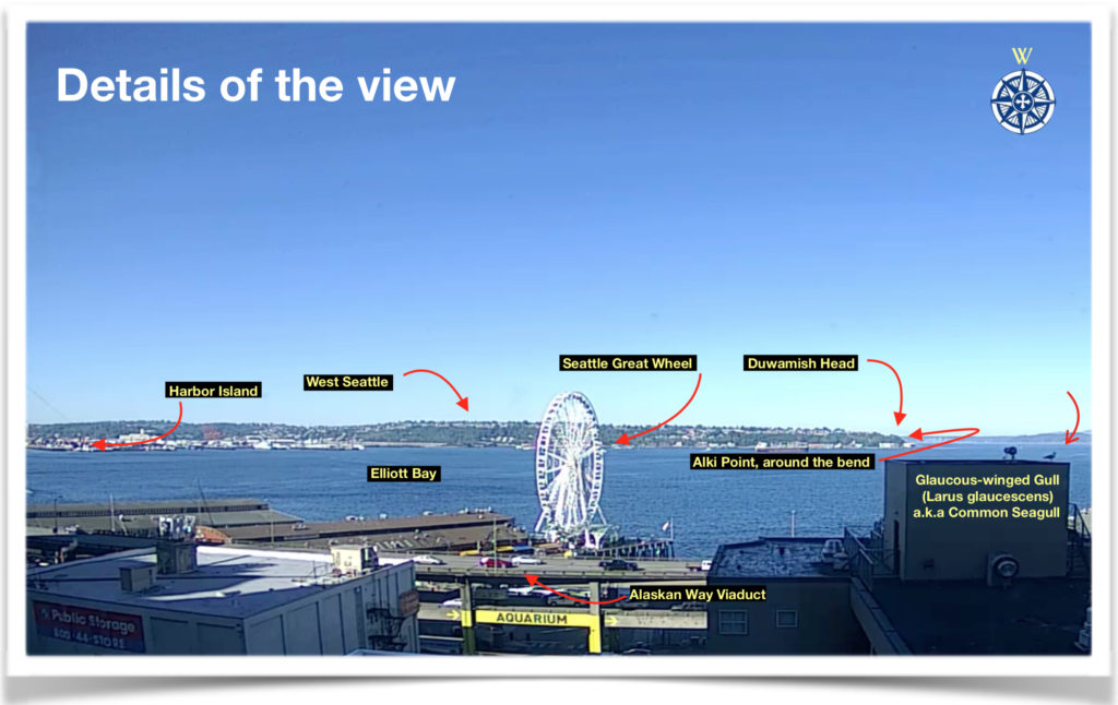 Seattle Waterfront Webcam Detail Shot 07 2018