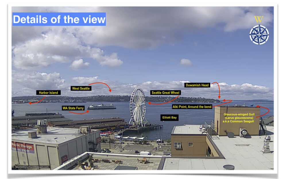 Seattle Waterfront Webcam Seattle Waterfront Webcam Detail Shot July 2019